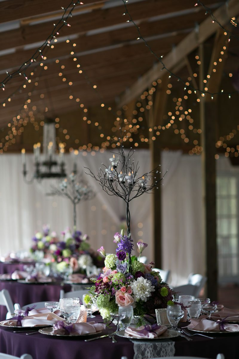 Reception decor string lights and tree centerpieces 4_1_16 Rocky and Evelyn Cross Creek Ranch Wedding 078